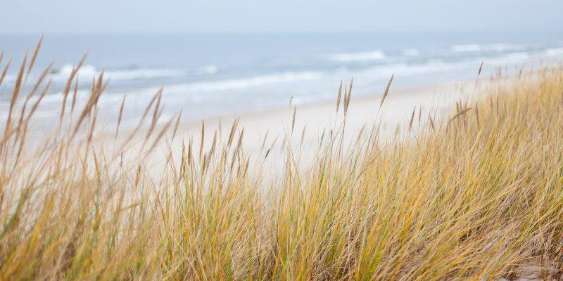 Achtsam im Moment – Dünen am Meer